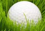 TourneyMate- Golf Tournament Software